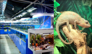 Waterways Garden Centre Aquatic and Reptile home image