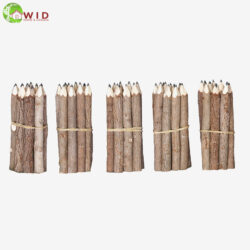 Small Twig Pencils
