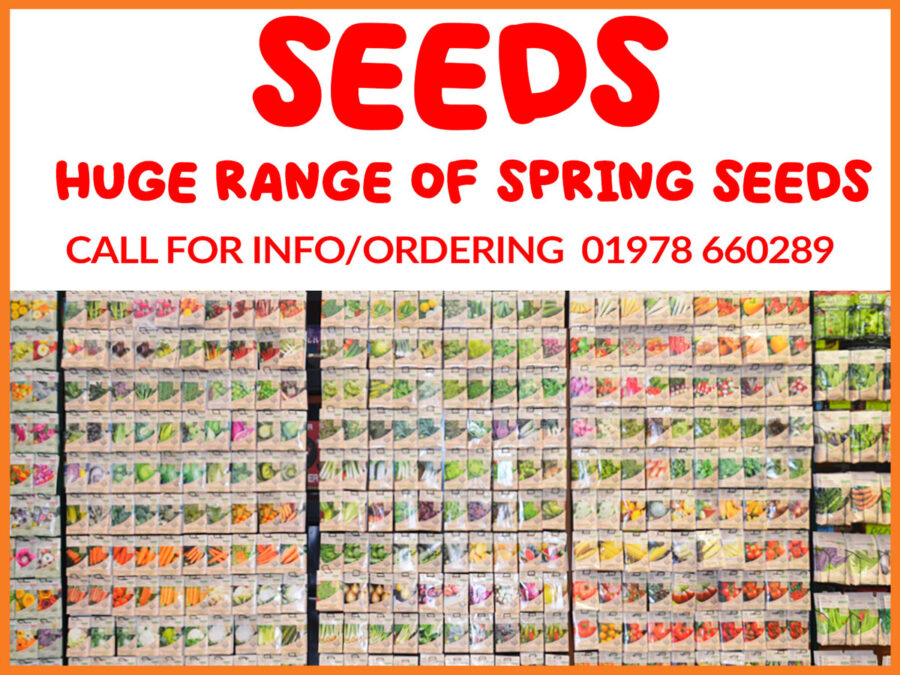 Seed promotion
