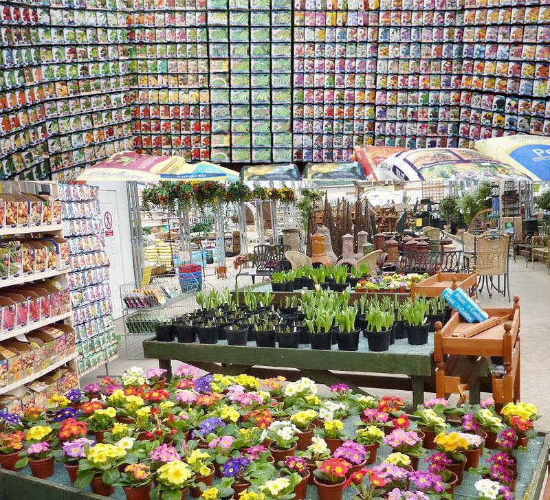 Spring seeds and bulbs. UK