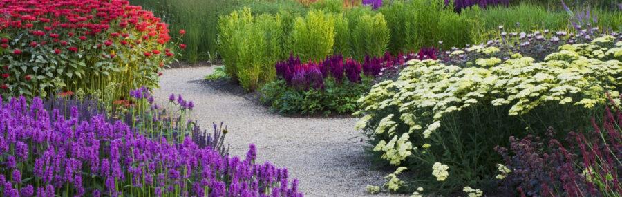Flower bed, garden supplies UK