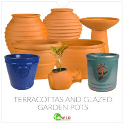 Terracottas and glazed pots