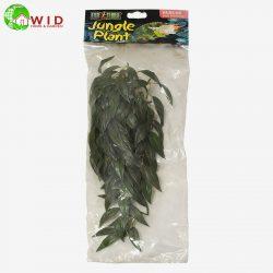 Jungle Plant medium