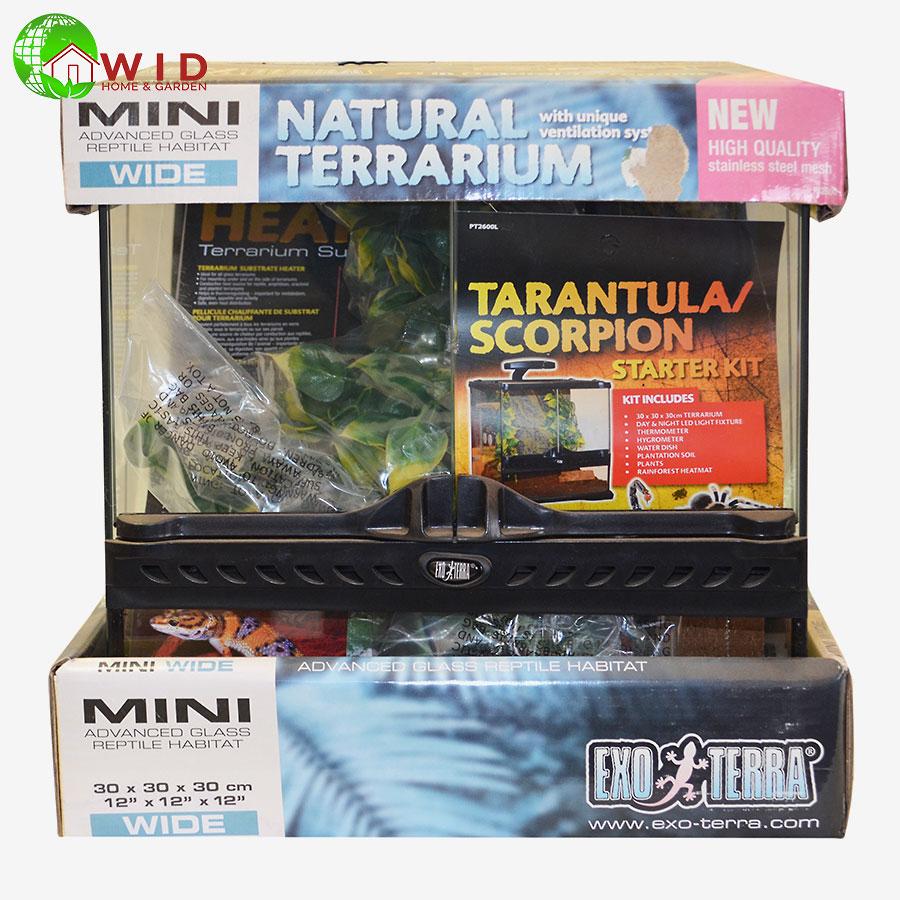 Extro tera Mini tall Trantula scorpion starter kit