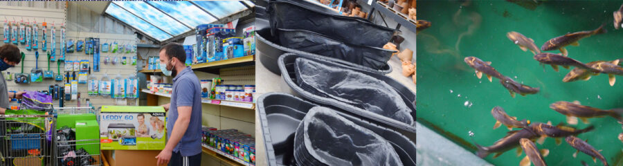 Fish and pond supplies. UK
