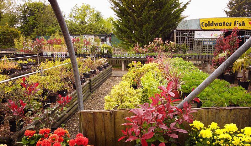 Waterways Garden Centre. UK