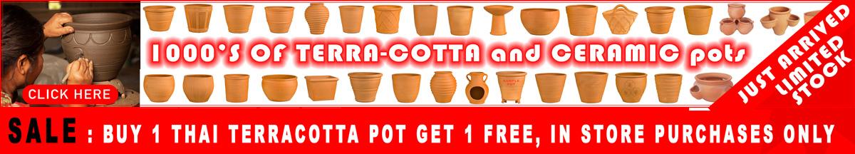 Garden pot just arrived sale