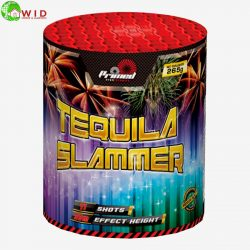 firework Tequila slammer 11 shot multi shot