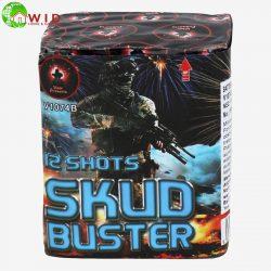 Skud Buster firework cake